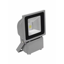 EUROLITE LED IP FL-80 COB 6400K 120°