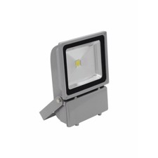 EUROLITE LED IP FL-100 COB 6400K 120°